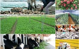 Câu hỏi khó cho nông nghiệp