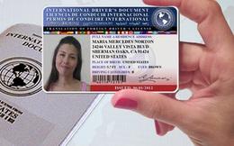 Hà Nội, TP.HCM cấp bằng lái xe quốc tế