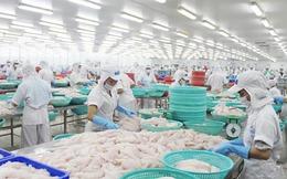 Nhiều vấn đề cần giải quyết cho ngành thủy sản