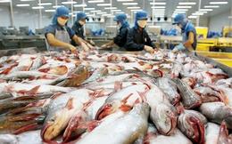 Không có chuyện cá tra trở lại danh sách đỏ của WWF