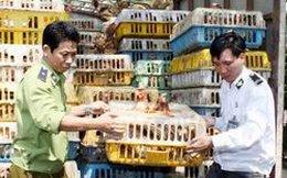 Kiểm soát chặt nhập khẩu gia súc, gia cầm