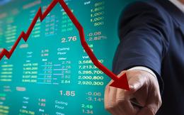 BSC: Lượng margin trên thị trường tập trung vào cả nhóm cổ phiếu cơ bản