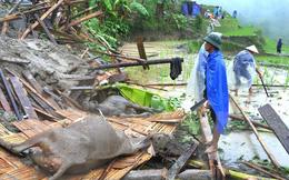 Việt Nam đứng thứ 7 trên toàn cầu về thiệt hại do biến đổi khí hậu