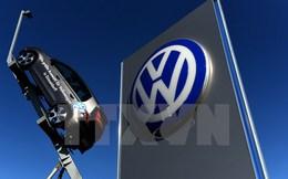 Volkswagen thu hồi gần 1 triệu xe gian lận khí thải tại Pháp