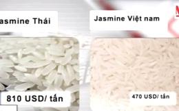 Vì sao gạo Việt lép vế trên thị trường quốc tế?