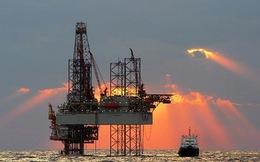 """Giá dầu sẽ bớt """"nhảy múa"""""""
