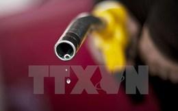 Quyết định giữ nguyên lãi suất 0% của Fed khiến giá dầu giảm