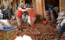 Ngày đầu lệnh cấm khoai tây Trung Quốc vào chợ nông sản có hiệu lực