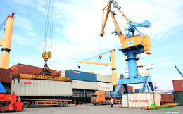 2 cấp phó xin nghỉ chưa đầy 1 tháng, Tổng giám đốc Cảng Đoạn Xá cũng từ nhiệm