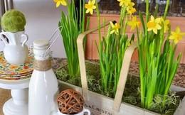 Mê mẩn với những góc bếp nhỏ xinh đầy hoa lá