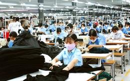 Vào TPP: Việt Nam sẽ được hưởng nhiều lợi ích