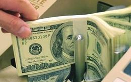 Quỹ Halley Asian Prosperity gia tăng tỷ lệ sở hữu tại BTP, DXP, SJD