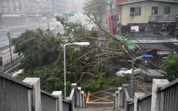 Đài Loan tơi bời trong bão, Trung Quốc sơ tán 158.000 dân