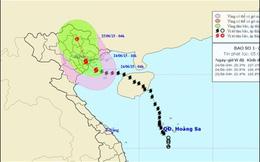 Bão số 1 cách bờ biển Quảng Ninh 70km, gió giật cấp 12