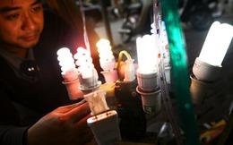 """Bóng đèn Điện Quang: """"Hụt"""" 12 tỷ đồng lợi nhuận sau kiểm toán"""