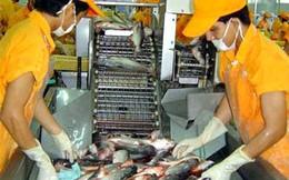 Xuất khẩu cá tra cả năm dự kiến đạt khoảng 1,7 tỷ USD