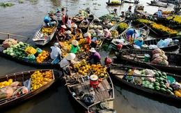 """Vì sao kinh tế thị trường ở Việt Nam vẫn """"nửa vời""""?"""
