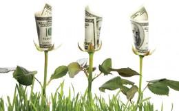 Công ty chứng khoán tranh thủ mở rộng margin tăng doanh thu môi giới?