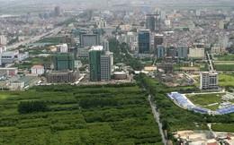 Năm 2015, quận Hoàn Kiếm dành hơn 15ha cho đất nông nghiệp