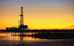 Giá dầu giảm mạnh vì dự báo FED nâng lãi suất