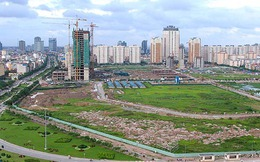 Hà Nội kiên quyết thu hồi đất trúng đấu giá để trống quá 12 tháng