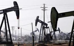 Nhà đầu tư hy vọng giá dầu sẽ hồi phục sớm hơn các dự đoán