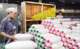 Nguyên phụ liệu dệt may: 48% nhập từ Trung Quốc