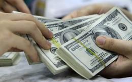 Chính sách tỷ giá mới thúc đẩy DN hoạt động theo cơ chế thị trường