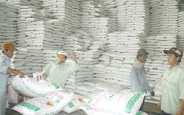 Đề nghị ưu tiên nhập khẩu đường thô
