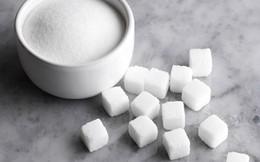 Giá đường rơi xuống mức thấp kỷ lục, cacao và cao su giảm giá