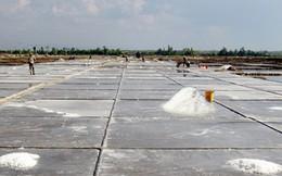 Diêm dân Bến Tre lao đao vì giá muối liên tục sụt giảm