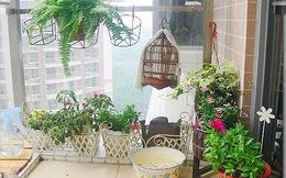 Trồng hoa ở ban công giúp hóa giải phong thủy xấu
