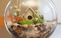 Nhà nhỏ đẹp nhờ những bình cây tí hon siêu ngộ nghĩnh