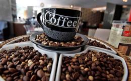 USDA: Tồn kho cà phê thế giới sẽ giảm do xuất khẩu và tiêu thụ cao kỷ lục