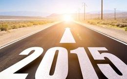 2015 – Năm quan trọng của đất nước