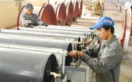 """Hội nhập: Vì sao doanh nghiệp Việt vẫn """"loay hoay, lúng túng""""?"""