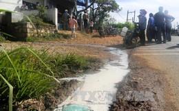 Người dân bức xúc đổ sữa ra đường vì quy định thu mua mới