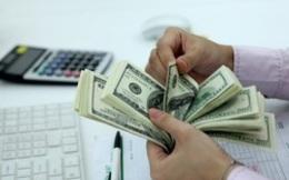 HSBC: NHNN cần giữ nguồn dự trữ ngoại tệ đủ để hỗ trợ ổn định tỷ giá