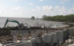 Quy hoạch 9 dự án phát triển thủy lợi tại Đồng bằng sông Cửu Long