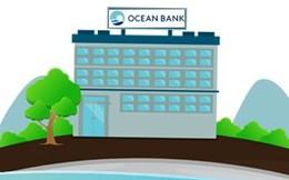 """[INFOGRAPHIC]: Điều """"cực lạ"""" trong HĐQT 2015 của Ocean Bank"""