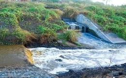 May Hồ Gươm bị phạt 154 triệu đồng vì xả thải ra môi trường