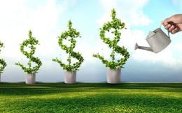 Petrosetco Distribution-PSD chốt quyền trả cổ tức bằng tiền 25%