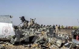 Ai Cập bác tin bắt hai nghi can đánh bom máy bay Nga