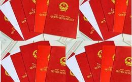 TP Hồ Chí Minh: Rà soát và cấp sổ đỏ cho các khu công nghiệp