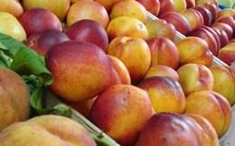 Ba Lan ký hiệp định xuất khẩu táo vào Việt Nam