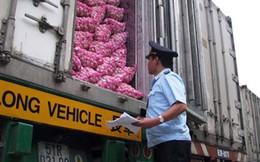 Doanh nghiệp phải trả 22 loại phí cho 1 lô hàng xuất nhập khẩu