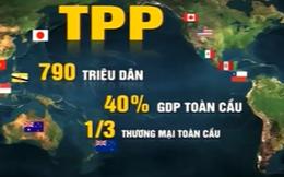 Công bố toàn văn TPP: Giải tỏa 'cơn khát' thông tin cho doanh nghiệp