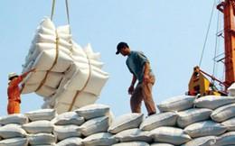Gạo Việt không được lợi gì từ TPP khi vào thị trường Nhật?