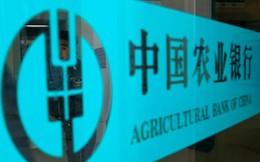 Trung Quốc tiếp tục phá đường dây 'ngân hàng ngầm' 4,5 tỉ USD