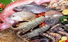Khơi thông nhiều thị trường thủy sản